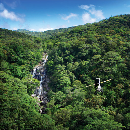 Rainforest Waterfall Tours FNQ